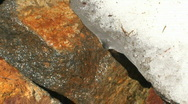Close up of Melting Snow During Spring Thaw in Washington - Pacific Northwest Stock Footage