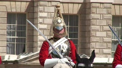Guard on Horse St James's Palace Stock Footage