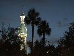 UT Minaret and Palms Stock Footage