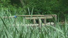 Old wooden bridge in English countryside Stock Footage
