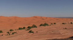 Erg Chebbi Dunes in Sahara and Guide Stock Footage