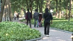 Vietnamese Woman, bamboo hat - stock footage
