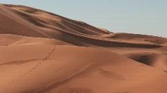 Footsteps in Sahara Desert Stock Footage
