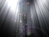 Stock Video Footage of Star groats NTSC