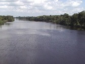 Flying low over jungle river Stock Footage