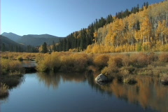 Brush Creek Beaver Pond Colorado Stock Footage