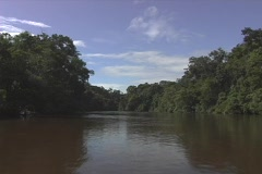 Boat ride down a muddy jungle river Stock Footage