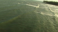 Flying over ocean, beach, and trees Stock Footage