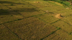 Flying over farmland in the Philippines Stock Footage