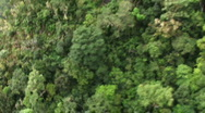 Aerial view of jungle mountain side Stock Footage
