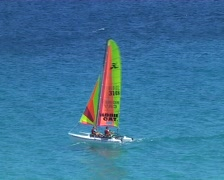 Catamaran sail boat Stock Footage