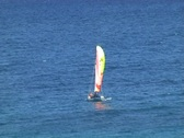 Catamaran sail boat Stock Footage