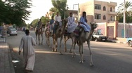 Men on Camels Stock Footage