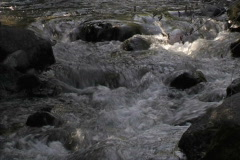 Stock Video Footage of Creek Rocks