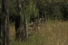 Old Corral Fence - stock footage