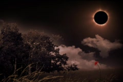 Solar Eclipse Landscape Stock Footage