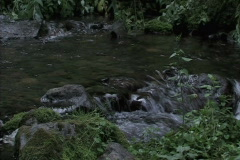 Stock Video Footage of Creek Flowing Over Rocks 2