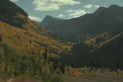 Mountain Aspen Glow Stock Footage