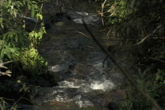 Mountain Creek Zoom Out Stock Footage