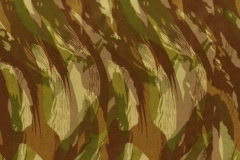 CAMO Green Tan Stock Footage