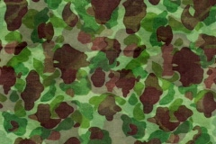 CAMO Green Brown Lhtgrn Stock Footage