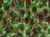 Stock Video Footage of CAMO Green Brown Lhtgrn
