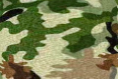 CAMO Tn Grn Brn Blk Stock Footage