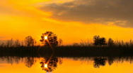 Beautiful evening in reflexion. Stock Footage