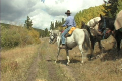 Hunters  Packmules & Horses 4 Stock Footage