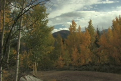 Dirt Road & Fall Colors Stock Footage