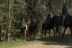 Trail Riders On Horseback 1  Stock Footage