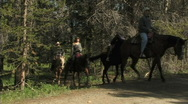 Stock Video Footage of Trail Riders On Horseback 1