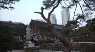 Stock Video Footage of Buddha Sculpture and Skyscraper