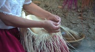 Stock Video Footage of Weaving a Panama hat, Ecuador