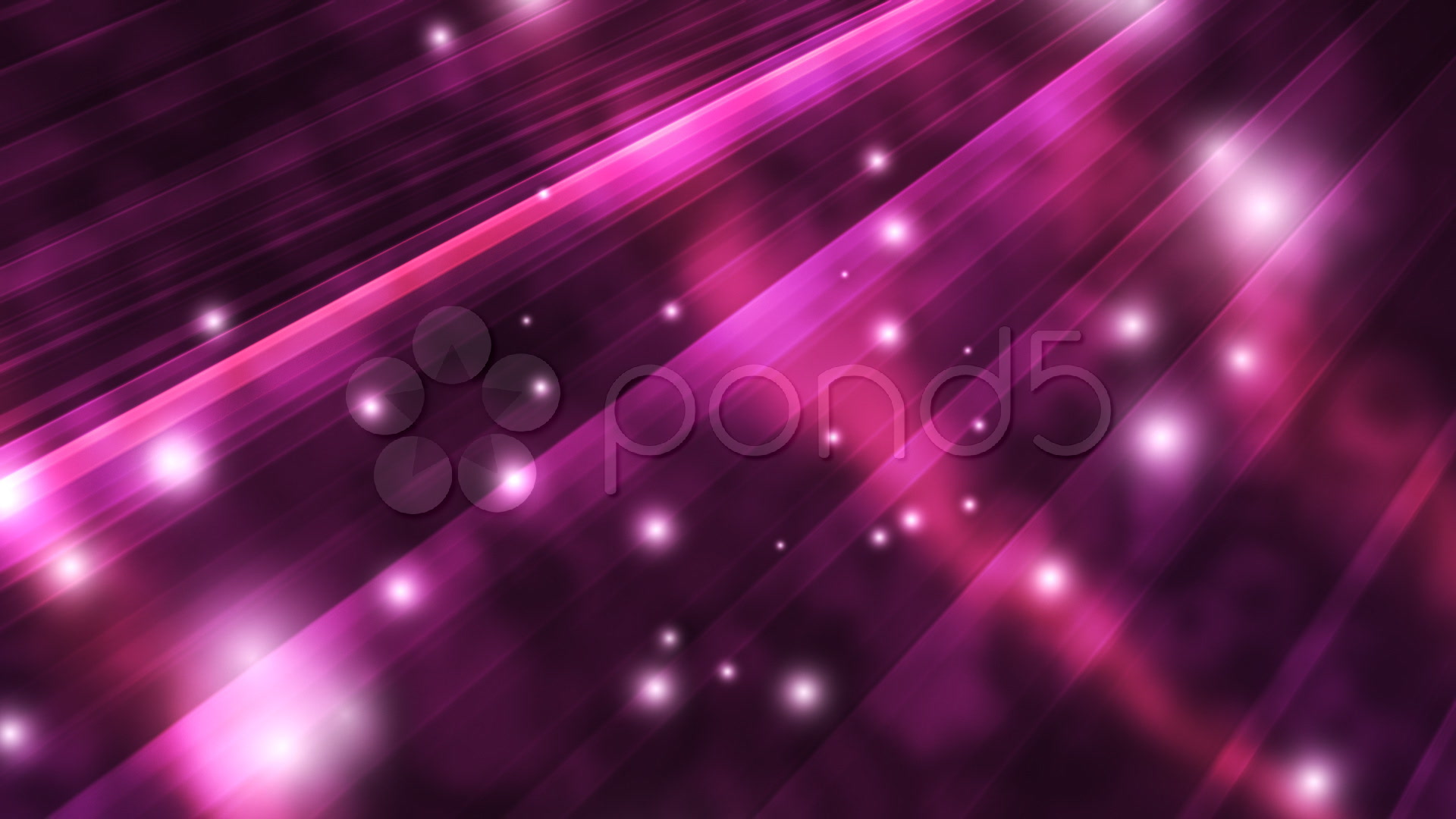 Elegant Purple Background Stock Video 293321 Hd Stock