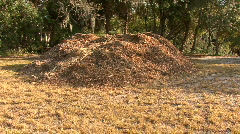 Compost Heap Stock Footage
