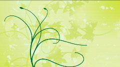 Growing Vines - stock footage