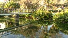Swampy Pedestrian Bridge Stock Footage