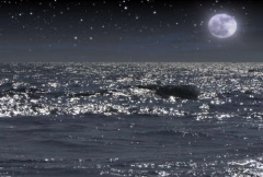 The Heavens 03 - NTSC - stock footage
