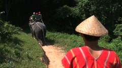 Riding on elephant with guide Stock Footage