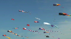 Kites Flying at Kite Festival in Washington State Stock Footage