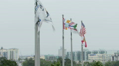 Flags Over Tampa Stock Footage