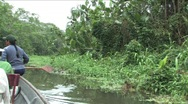 Canoeing the Amazon rivers Stock Footage