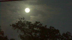 Bright Full Moon, Clouds, & Trees Stock Footage