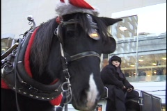 Christmas Horse and Carriage Ride 1 Stock Footage