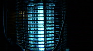 Stock Video Footage of Bug Zapper 6