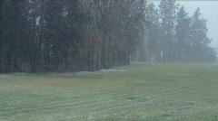 Snowfall-timelapse-01 Stock Footage