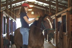 Girl Braids Horse in Stable 1 Stock Footage