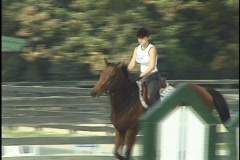 Horse Jumping with Girl 3 Stock Footage