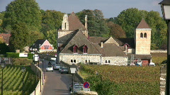 vineyard - cote d ore - france - stock footage